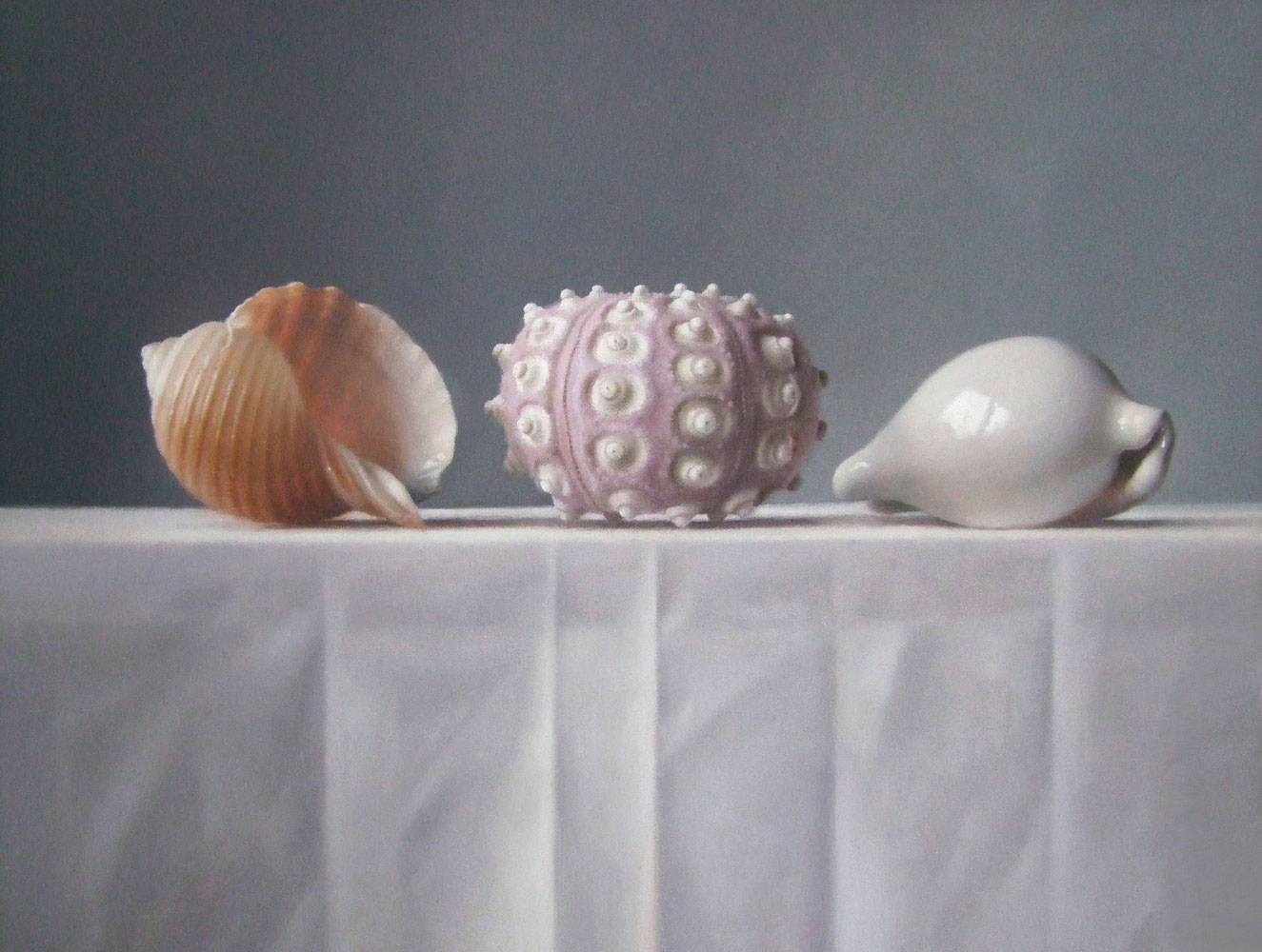 Lucy McKie Still Life with Shells