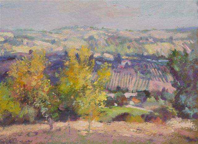 Hills,Romagna - Italy